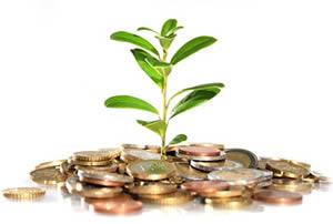 Investment renewable energy